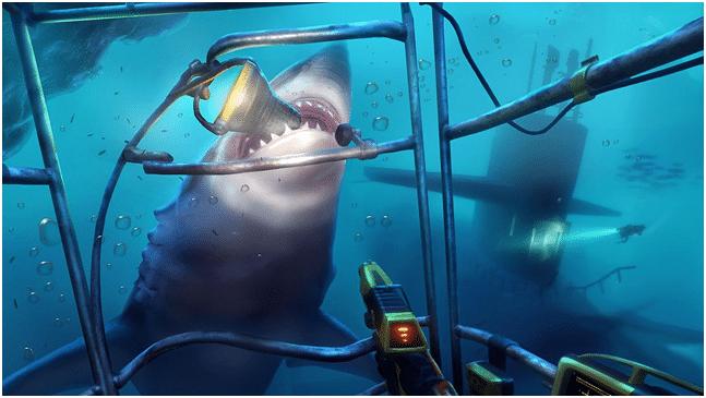 squalo bianco vr