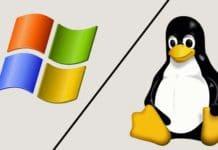 Hosting linux o windows